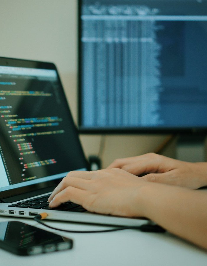 JUNIOR SOFTWARE DEVELOPER: WHAT YOU NEED TO KNOW